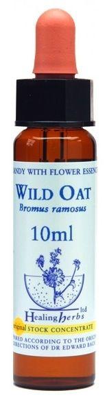 Healing Herbs Wild Oat 10ml