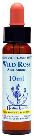 Healing Herbs Wild Rose 10ml