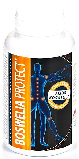 Intersa Boswelia Protect 500mg 45 perlas