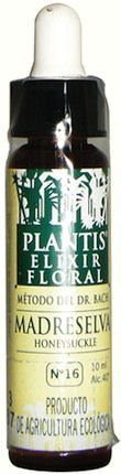 Plantis Honeysuckle 10ml