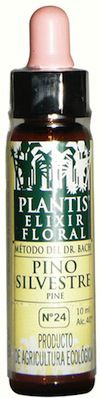 Plantis Pine 10ml