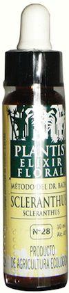 Plantis Scleranthus 10ml