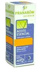 Pranarom Cedro de Himalaya Aceite Esencial 10ml