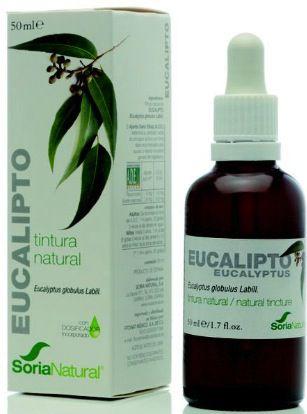 Soria Natural Eucalipto Extracto 50ml