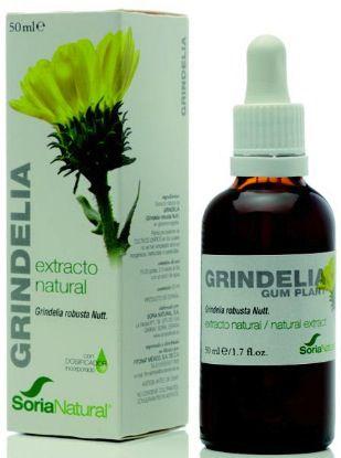 Soria Natural Grindelia Extracto 50ml