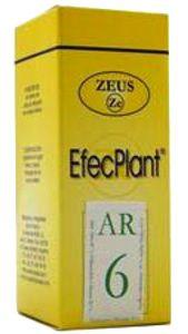 Zeus Efecplant 06 Artritis-Reuma 60ml