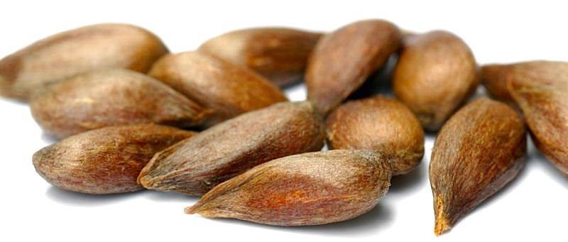 graviola seeds