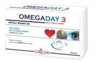 herbofarm_omegaday_3.jpg
