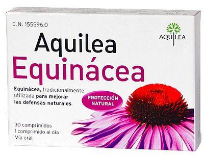 aquilea_equinacea.jpg