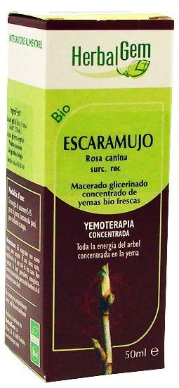 herbalgem_escaramujo.jpg