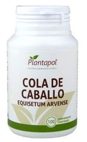 plantapol_cola_de_caballo.jpg